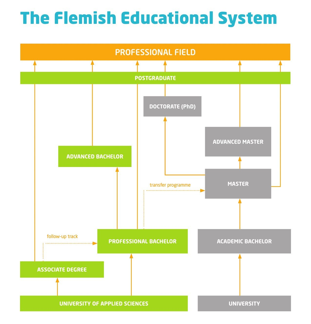 The Flemish Educational System: what's the difference between a univeristy of applied sciences and a university?